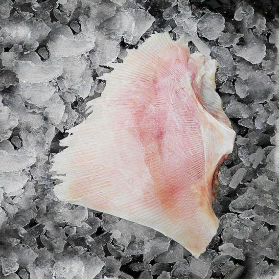 Comprar Raya pescado Salvaje