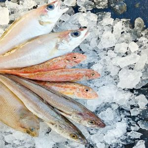 pescados para fritura mediterránea
