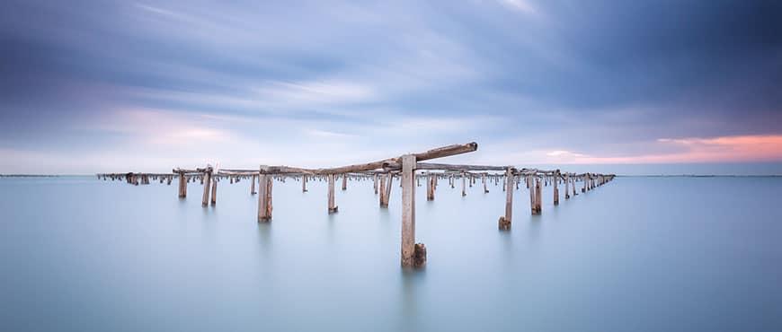 Marisco del Delta del Ebro